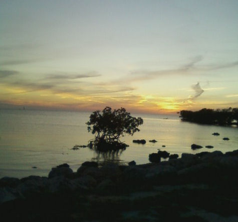 Sleeplessness is not uncommon. Destress with this sunset.
